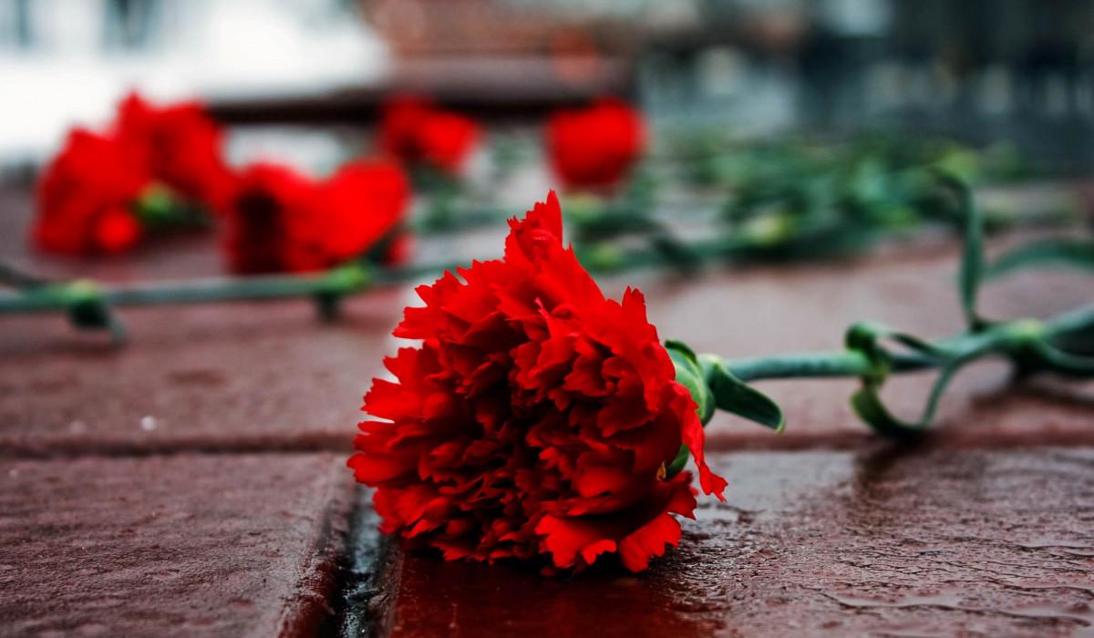 День памяти воинов-интернационалистов Гвоздика цветы