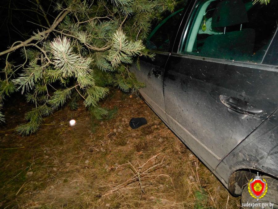ДТП машина в лесу
