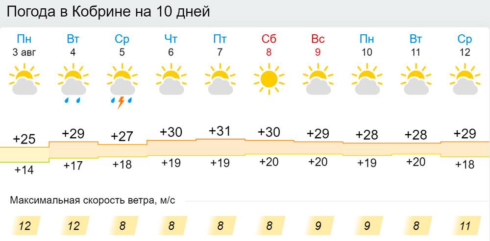Погода в Кобрине в августе