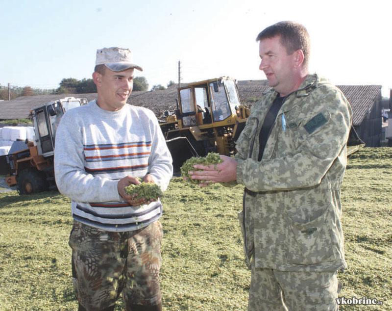 (справа налево): Олег МЛЕЧКО и механизатор Павел ТЕТЕРУК оценивают качество кукурузного силоса.